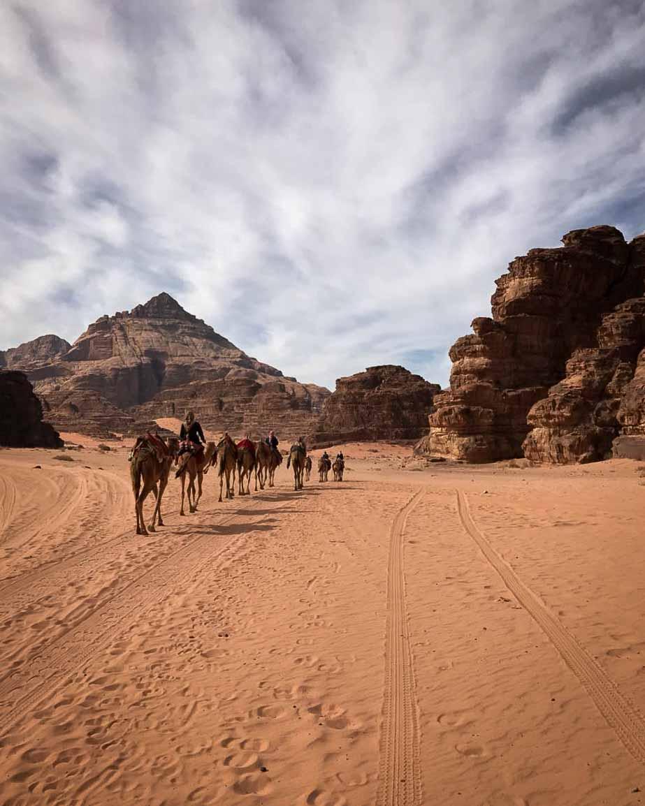 camel trek wadi rum