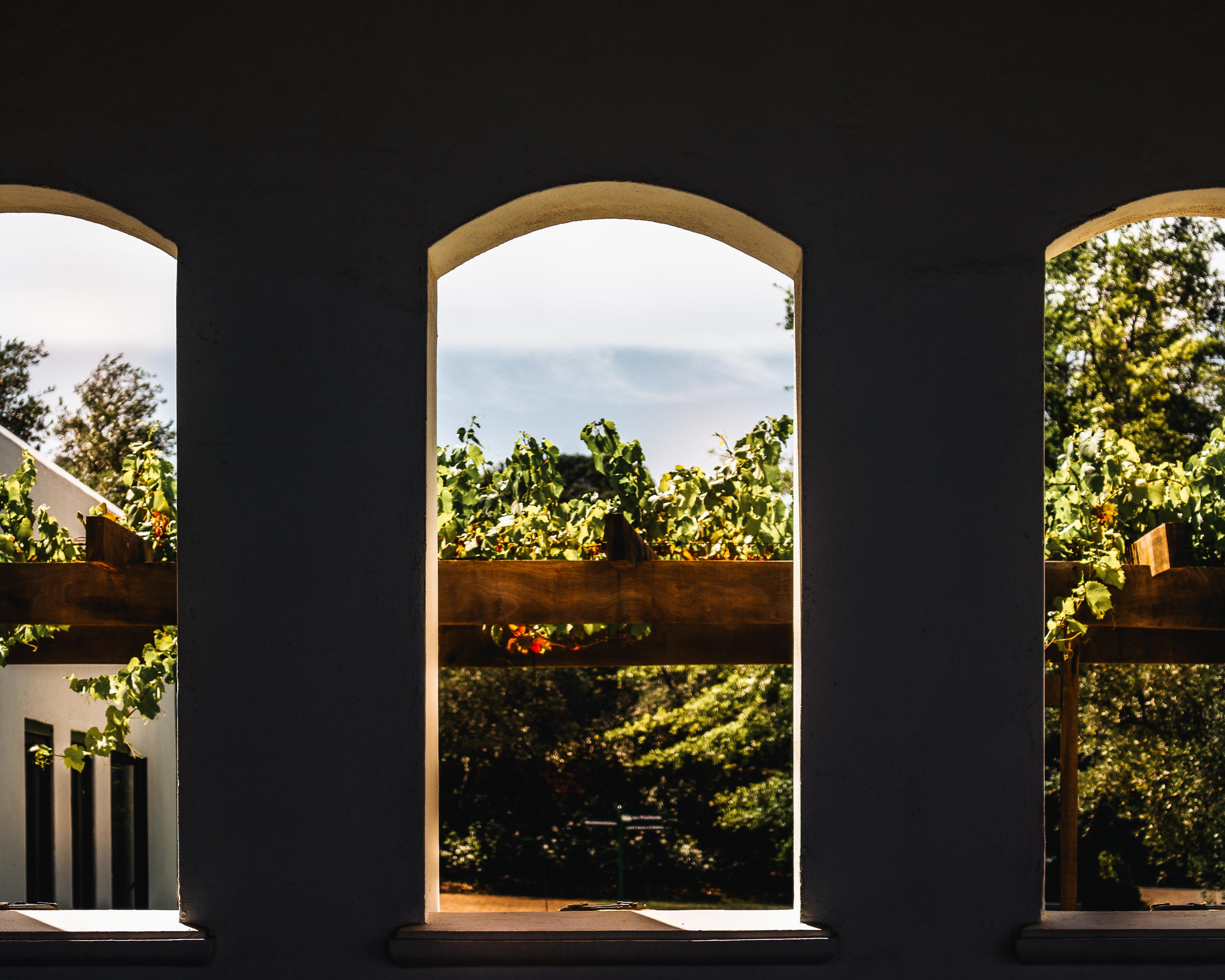 vredeenlust wine estate arches